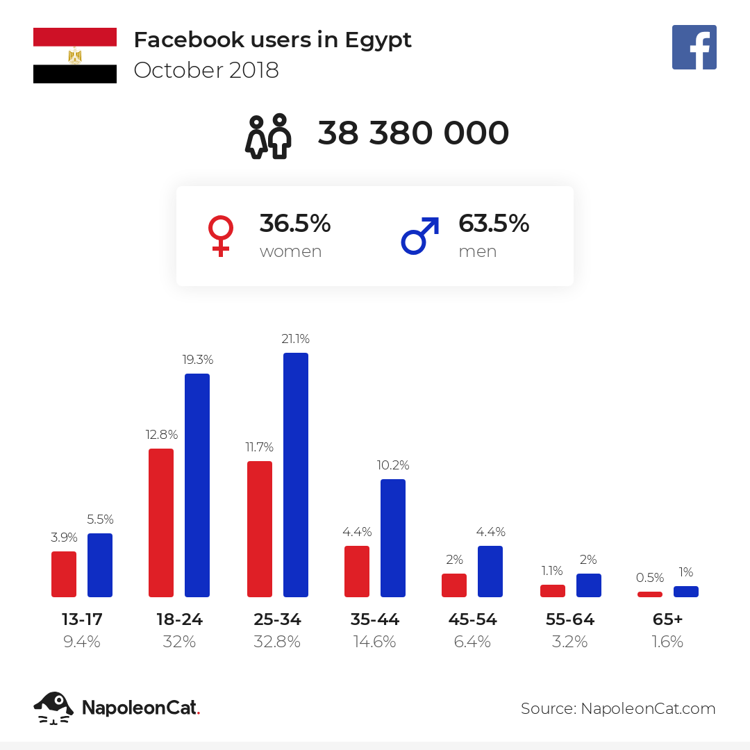 Facebook users in Egypt