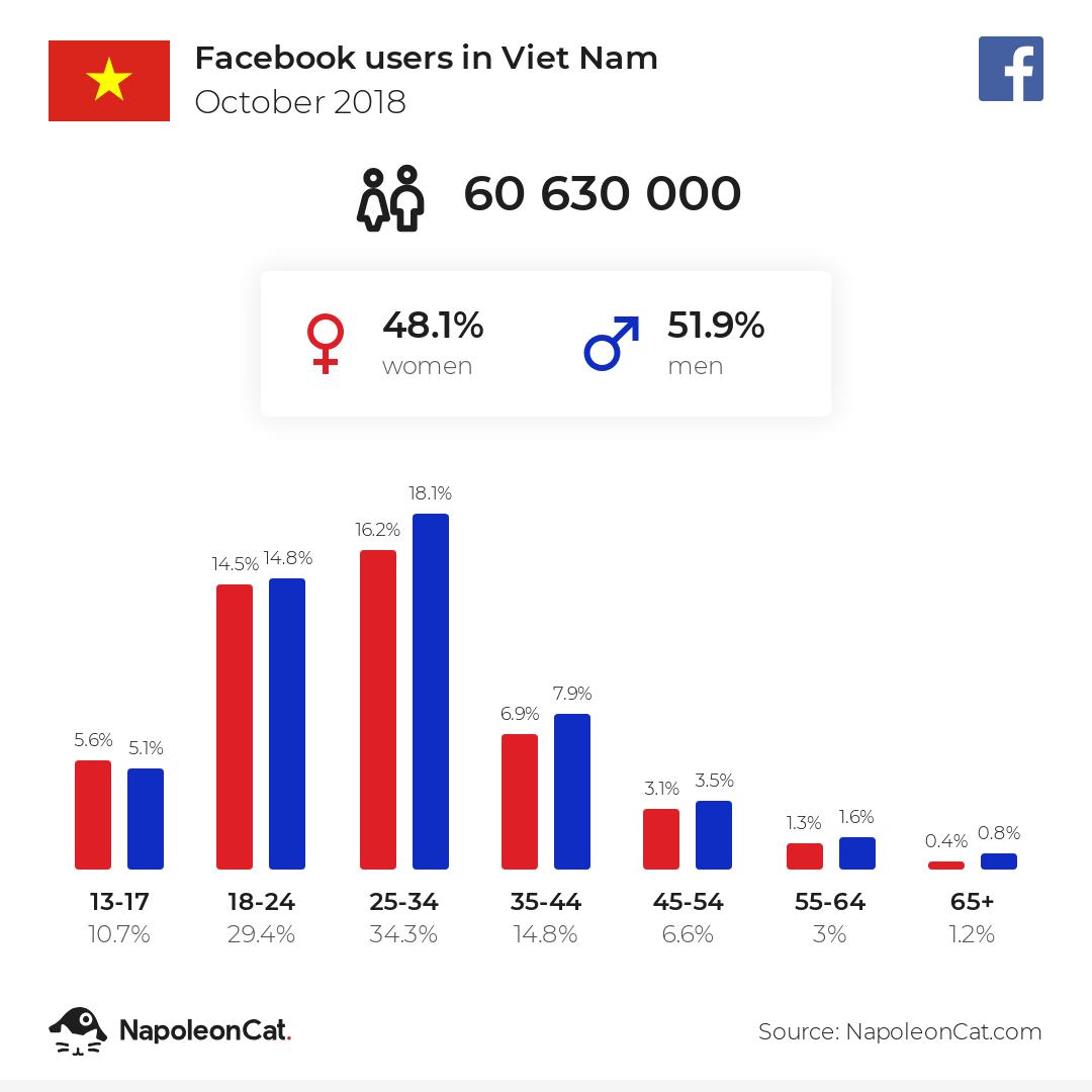 Facebook users in Viet Nam