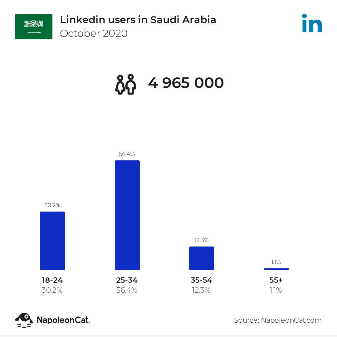Linkedin users in Saudi Arabia