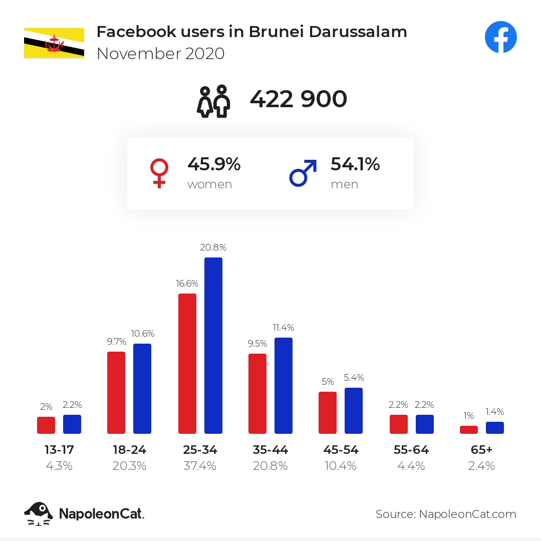 Facebook users in Brunei Darussalam